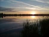 Фри. Белое Озеро. Июнь 2013.